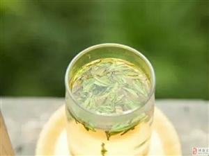 春季阳气升,顺时饮茶最养人!