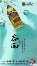 【溪凤林】谷雨
