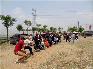天问学校老师400多人来枝江参加社会实践