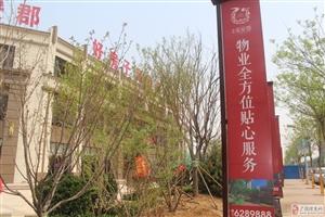 【海通・乐安郡】景观示范区盛大开放!
