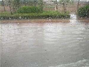 旱情解除啦!这两天博兴下雨量竟然排在第......