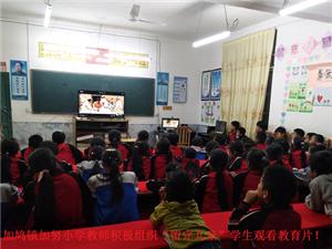"""加鸠镇加努小学教师积极组织""""留守儿童""""学生观看教育片!"""