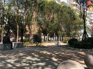 威尼斯人注册新建8处街头游园,看看都在哪,离你家近不?