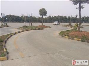 江汉大学附近有哪些驾校?哪个驾校好评率高?