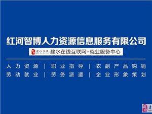互联网+就业的红河智博携手国内500强企业