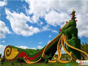 来盐亭赴一场千年之约,让灵魂撞见自己的绿水青山!