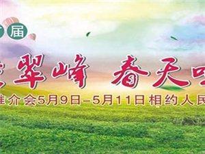 天竺翠峰;春天味道;茶叶推介大型演艺活动即将山阳上映