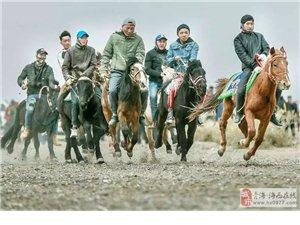 第二届《陶尔根焦烙》赛马会在格尔木圆满举行