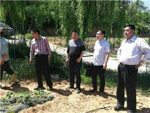 陕州区常务副区长张天生督察西李村上断扶贫产业,助力上断美丽乡村快速发展