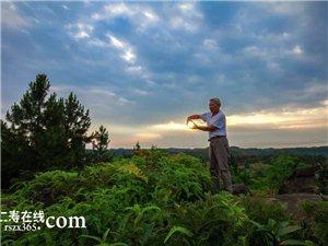 节会经济+乡村旅游,禾加镇乡村振兴添动力