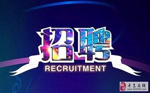 招聘公告:寻乌县公安局公开招聘辅警8名,想报名的快点来哦~