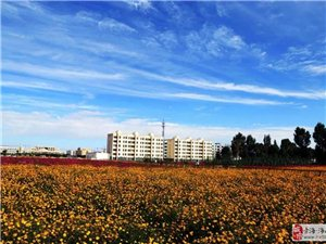 德令哈的摄影爱好者快看朝力拍摄的肃北,拍出来的照片美爆了。。。。