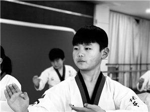跆拳少年-图集系列一