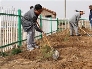 农信耕耘绿化