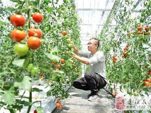 农旅融合发展;助力乡村振兴