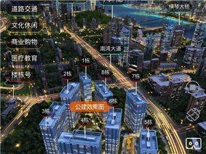 珠海首个泰禾项目(泰禾中央广场)即将亮相!