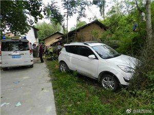 汉中车祸,车辆直接窜进草丛!