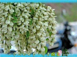 雷速5月26-27日最美青州一山,一村,一古城特价两日游计划报名