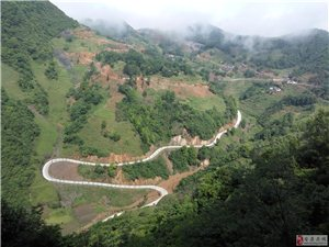 黄金村美景