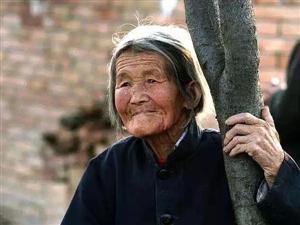 【绿野书院】老母亲的泪――武功茶舍