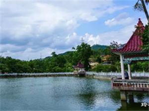 【发现】湖光山色过路塘古树参天景色美