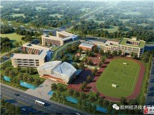 青医附院正式落户胶州!有关青岛大学胶州校区、中学、小学的最新消息来啦!