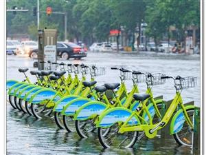 大雨过后、黄河路变成了黄河