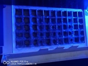 哪个大神会修这个制冰机啊?