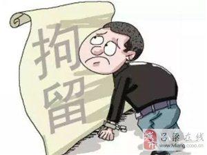 临县拘留擅自拆封被查封场所的严某