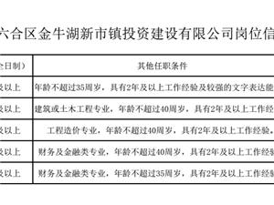 南京市六合区金牛湖新市镇投资建设有限公司招聘简章