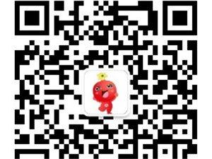 临潼第二届石榴花节
