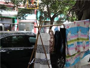 """富顺县城市管理局关于""""三创联动曝光栏""""相关问题的整改回复"""
