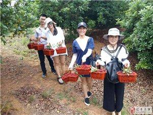 信丰一对男女朋友公然发帖5月20日相约小树林打野战