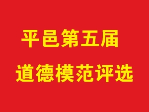 平邑县第五届道德模范大型评选活动投票专题