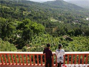 夫妻俩承包686亩林地建家庭农场