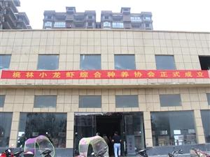 潢川县脱贫攻坚小龙虾养殖技术巡回(桃林铺镇)培训班
