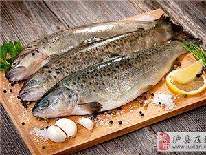 最忐忑的恐怕应该是——冷冻鱼安全吗?