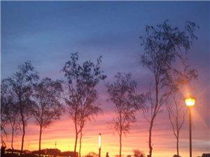 阳光公园看夕阳