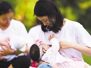 中国内地首家母乳库诞生在广州 五年协助救治365名重症患儿