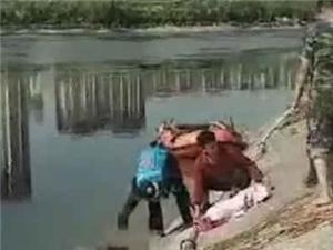 不忍看 !14岁男孩捡贝壳送母亲当礼物,不幸溺亡,家长注意了!