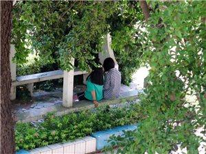 致青春第二期|潢川这所113岁的百年名校,如今变成这个模样....