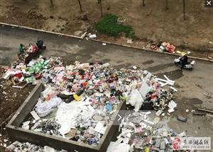 网友反映:东西湖海昌天澜小区3期私设垃圾池 严重影响居民生活