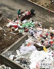 网友反映:东西湖海昌天澜小区3期私设垃圾池