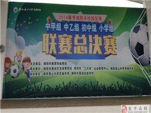 盐亭中学参加绵阳市校园足球总决赛载誉而归(附图)