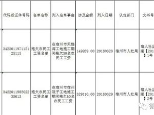 """宿州市人社局公布2018年第一批拖欠农民工工资""""黑名单"""""""
