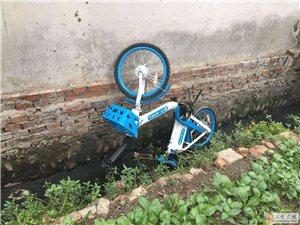 网友爆料:南郑一共享电瓶车被扔臭水沟