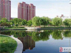胶州市获得青岛市十区市城乡环境综合整治考核第一名!