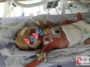 【小城大爱】新生儿性命垂危,这群人用爱心完成生命接力!