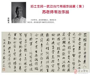 【绿野书院】心中的伟人―【苏建文老师】――张俊杰