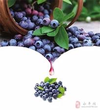 集赞免费吃蓝莓了!蓝莹蓝莓老板太壕!